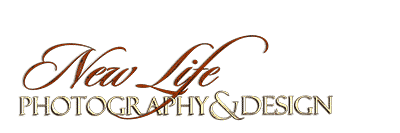 New Life Photography & Design