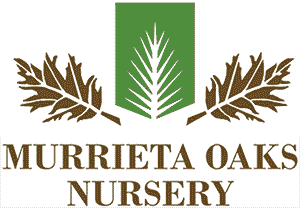 Murrieta Oaks Nursery